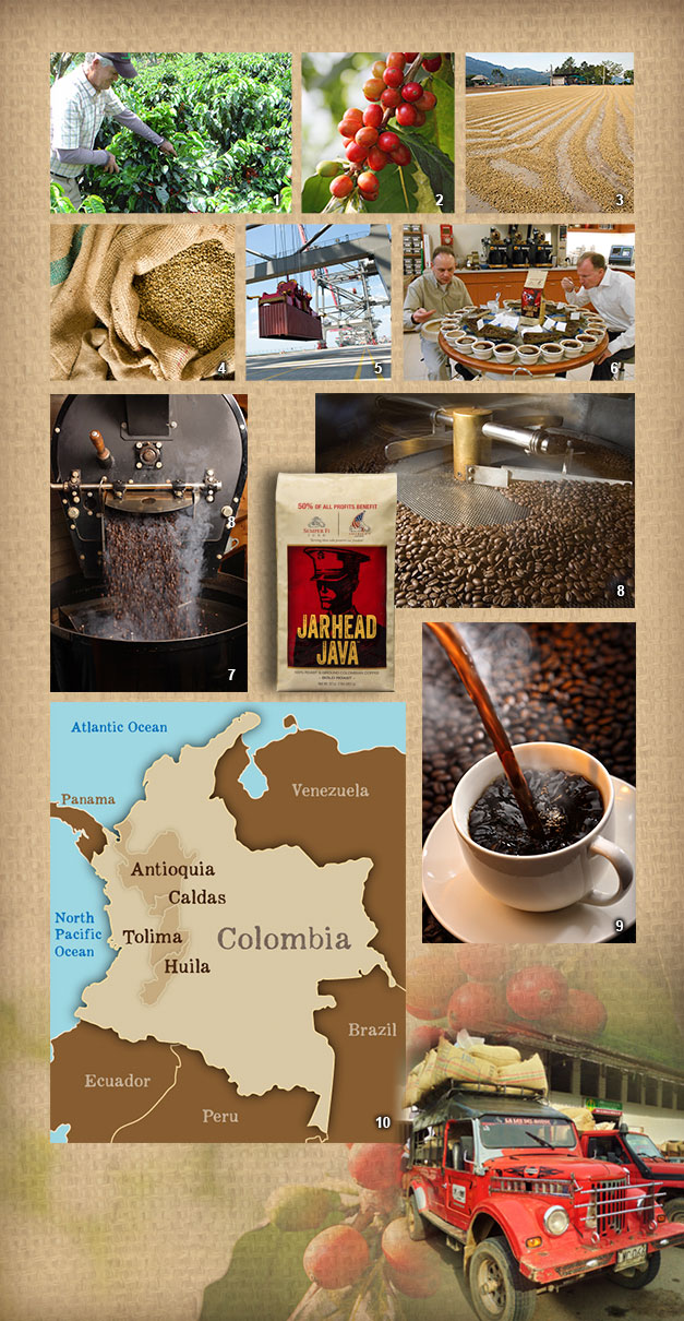 the journey of coffee